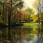 Chestnut Ridge Campground in Hubbard OH is a member of the Ohio Campgrounds Owner Association