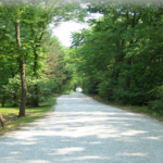 Olive Branch Campground