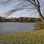 Paradise Lake Park
